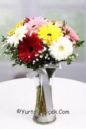 Cam vazoda rengarenk gerberalar ile sevdiklerinize doğanın capcanlı renklerini yurtdışına gönderme fırsatı.