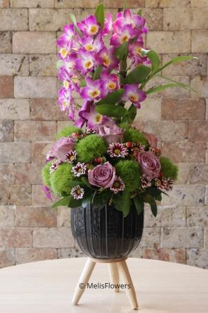 Dendrobium Orkide ve Güller