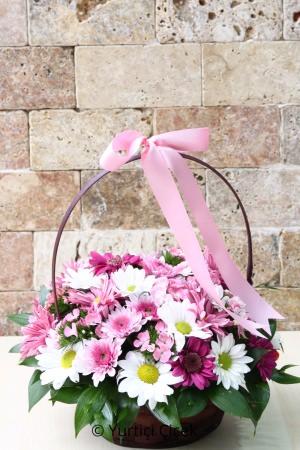 Sepette Bahar Çiçekleri